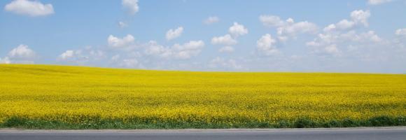 ייעוץ וליווי לרכישת קרקע באזורי תעשייה